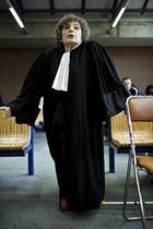 Vincent nguyen avocats de seine saint denis en gr ve - Tribunal de grande instance de bobigny bureau d aide juridictionnelle ...
